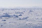 Ice fjord — Stock Photo