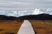 Boardwalk to the icefjord — Stock Photo