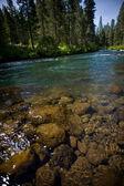 Cold mountain river 2 — Stock Photo