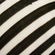 Striped surface of ceramic products. - Stock Photo