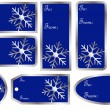 Set of Christmas Gift Tags in Blue — Stock Vector #3785730