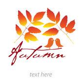 Autumn card — Stock Vector