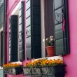 Flowers at windows of pink house — Stock Photo