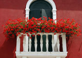 Flowers on a balcony — Stock Photo