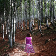 Woman walking in sunlit woods — Stock Photo
