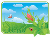 Two ladybugs on the wild rose — Stock Vector