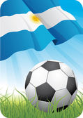 World soccer championship - Argentina — Stock Vector