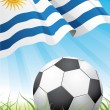 World soccer championship 2010 - Uruguay — Stock Vector