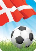 World soccer championship - Denmark — Stock Vector