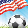 Royalty-Free Stock Vector Image: World soccer championship 2010 - USA