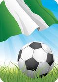 World soccer championship 2010 - Nigeria — Stock Vector