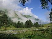 山中的小溪 — 图库照片