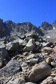 Montagne — Photo