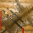 Skin of leopard with swords on the wall - Stock Photo