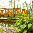 Freshwater marsh with bridge — Stock Photo #3384315