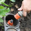 Irrigation sprinkler watering grass plug and socket - Stock Photo
