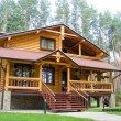 Wood mansion in pine forest — Stock Photo