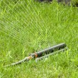Stock Photo: Irrigation sprinkler watering grass
