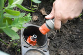 Irrigation sprinkler watering grass plug and socket — Stock Photo