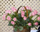 Roze rozen in mand — Stockfoto