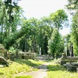 Old cemetery — Stockfoto