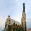 St. Stephens Cathedral — Stock Photo