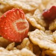 Stock Photo: Dried strawberry and cereals