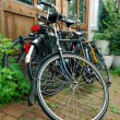 Bicycles — Foto Stock #2853021