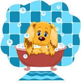 Hunden badar. — Stockvektor