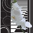 Orchid on a striped background. - Imagen vectorial