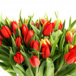 Bouquet of tulip — Stock Photo