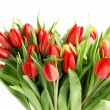 Stock Photo: Bouquet of tulip