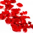 Petals of a red rose — Stock Photo