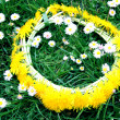 Wreath from yellow dandelions — Stock fotografie #3430154