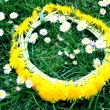 Wreath from yellow dandelions — Stockfoto