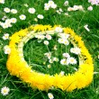 Wreath from yellow dandelions — Stock Photo