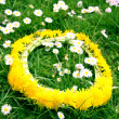 Wreath from yellow dandelions — Stock fotografie