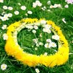 黄色蒲公英的花圈 — 图库照片