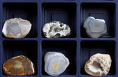 The collection of minerals — Stock Photo