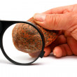 Stock Photo: Black magnifying glass and stone