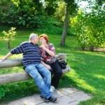 Happy elderly couple — Stock Photo #2913110