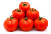 Tomatoes group — Foto de Stock