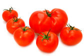Tomatoes group — Stockfoto