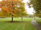 Walk in the park — Stock Photo