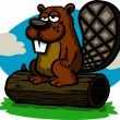 Cartoon Beaver — Stock Vector