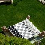 Chess game in a garden — Stock Photo #3542758