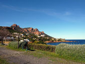 Esterel massif viewed from a little garden — Stock Photo