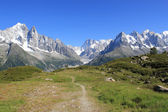 Massiccio del monte bianco e il piccolo sentiero — Foto Stock