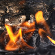 Fire on the scorched log — Stock Photo