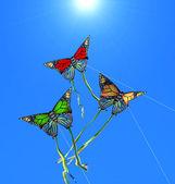 Três pipas coloridas no céu ensolarado — Foto Stock